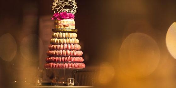 Tasha + Raph   Fountain Blue, Des Plaines Wedding Photographers